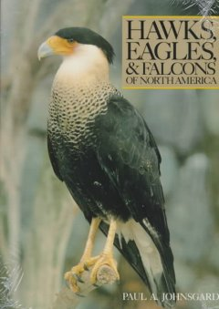 Hawks, Eagles & Falcons of North America: Biology and Natural History