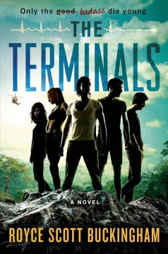 The Terminals