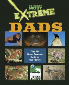 Extreme Dads