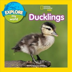 Ducklings Book Cover
