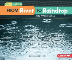 From River to Raindrop Book Cover