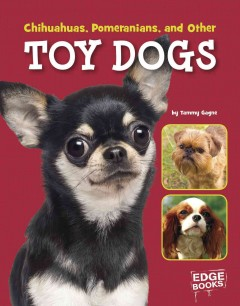 Chihuahuas, Pomeranians, and Other Toy Dogs