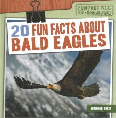 20 Fun Facts About Bald Eagles