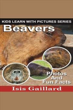 Beavers : Beavers: Photos and Fun Facts for Kids