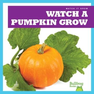 Watch A Pumpkin Grow