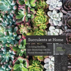 Succulents at Home