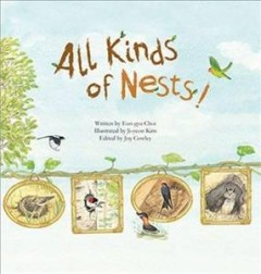 All Kinds of Nests!