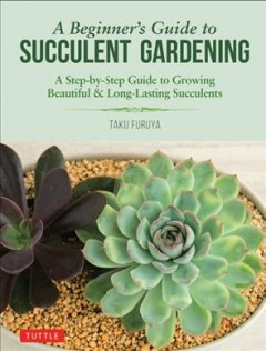A Beginner's Guide to Succulent Gardening