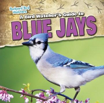 A Bird Watcher's Guide to Blue Jays