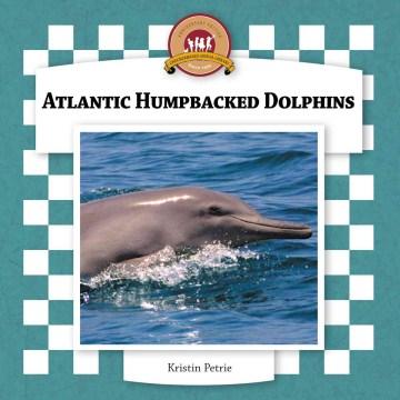 Atlantic Humpbacked Dolphins