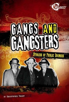 Gangs and Gangsters