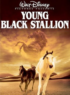 The Young Black Stallion