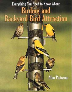 Everything You Need to Know About Birding and Backyard Attraction