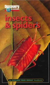 Discovery Channel Insects & Spiders