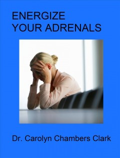 Energize Your Adrenals