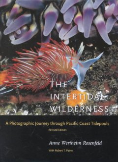 The Intertidal Wilderness