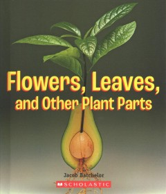 Flowers, Leaves, and Other Plant Parts