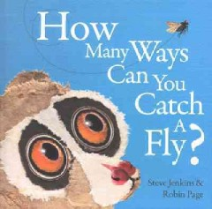 How Many Ways... Can You Catch A Fly?