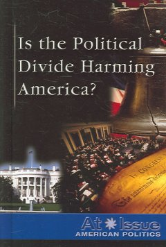 Is the Political Divide Harming America?