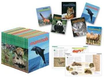 Exploring Mammals