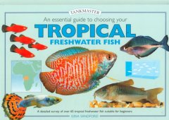 An Essential Guide to Choosing your Tropical Freshwater Fish