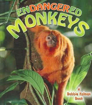 Endangered Monkeys