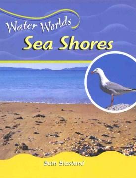 Sea Shores