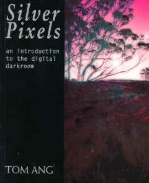 Silver Pixels