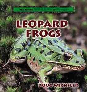 Leopard Frogs