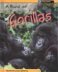 A Band of Gorillas
