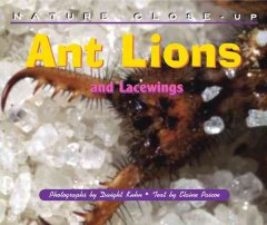Ant Lions and Lacewings