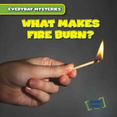 What Makes Fire Burn?