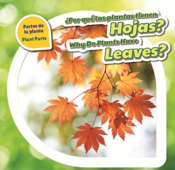 ¿Por qué las plantas tienen hojas?