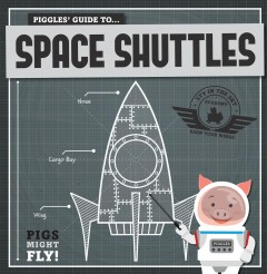 Piggles' Guide to Space Shuttles