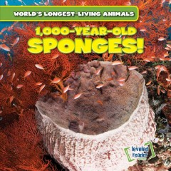 1,000-year-old Sponges!