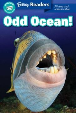 Odd Ocean!