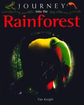 Journey Into the Rainforest