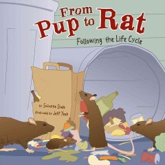 From Pup to Rat