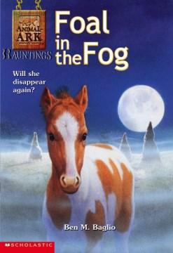 Foal in the Fog