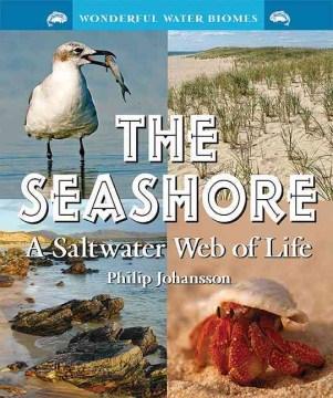 The Seashore