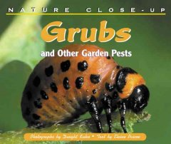 Grubs and Other Garden Pests