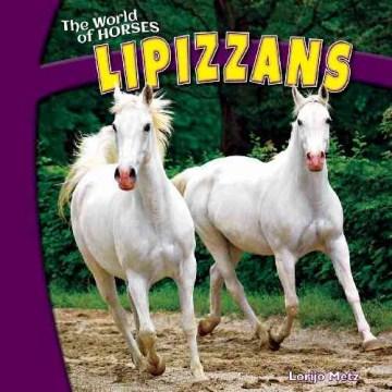 Lipizzans