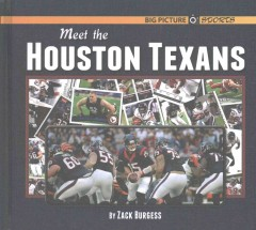 Meet the Houston Texans