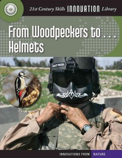 From Woodpeckers To-- Helmets