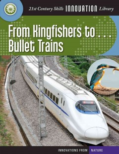 From Kingfishers to ... Bullet Trains