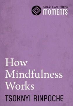 How Mindfulness Works