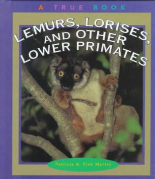 Lemurs, Lorises, and Other Lower Primates