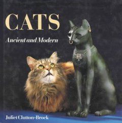Cats, Ancient and Modern