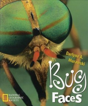 Bug Faces