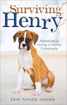 Surviving Henry